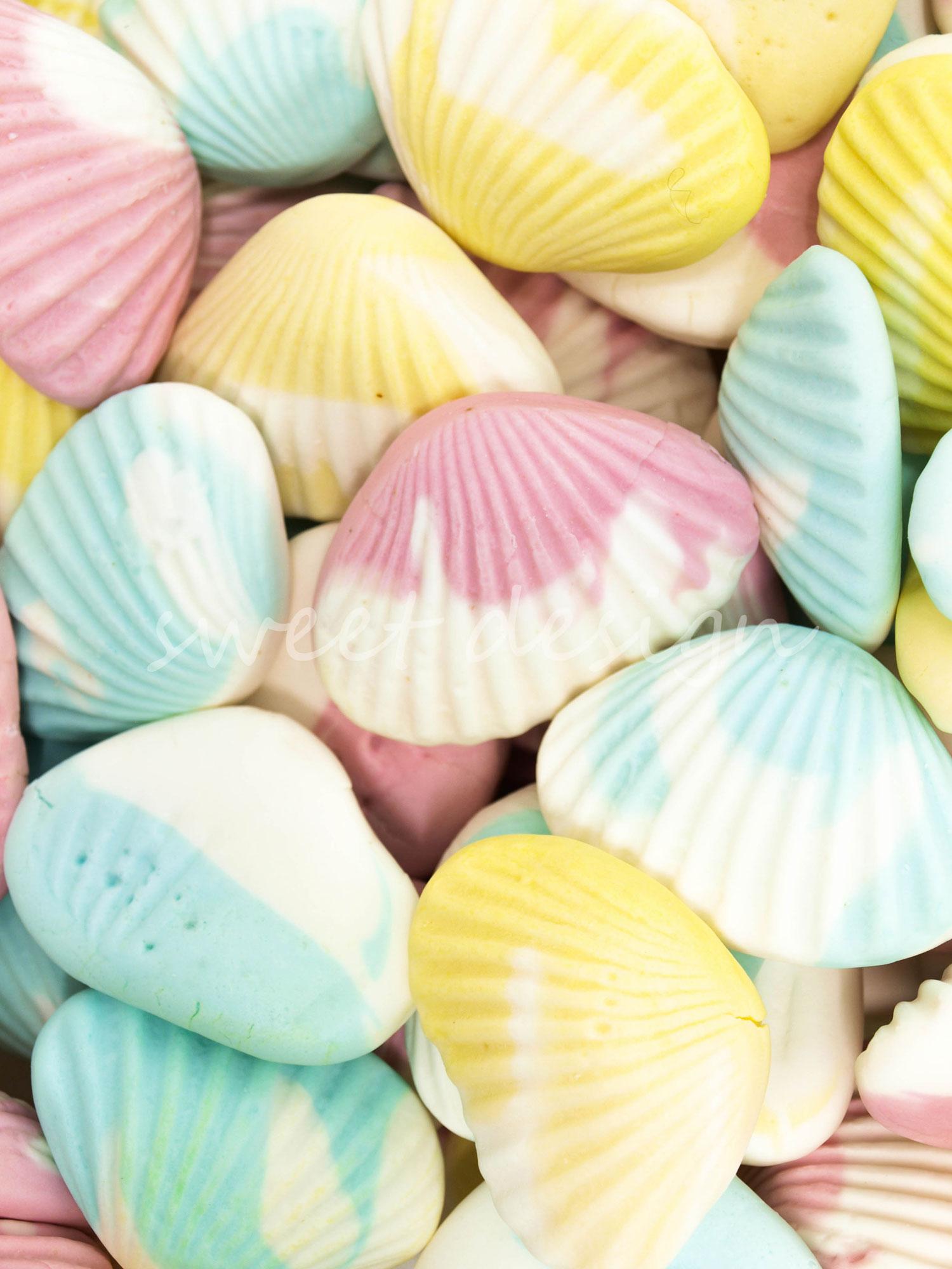 Conchas De Mar Sweet Design Conchas De Mar Chuches Multicolor - Fotos-de-conchas-de-mar