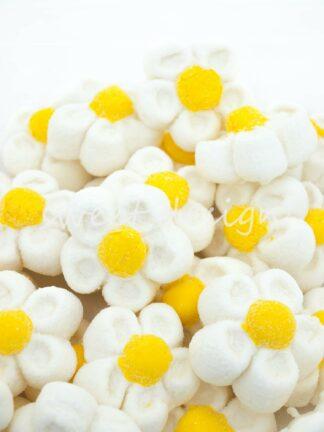 Flores blancas dulces